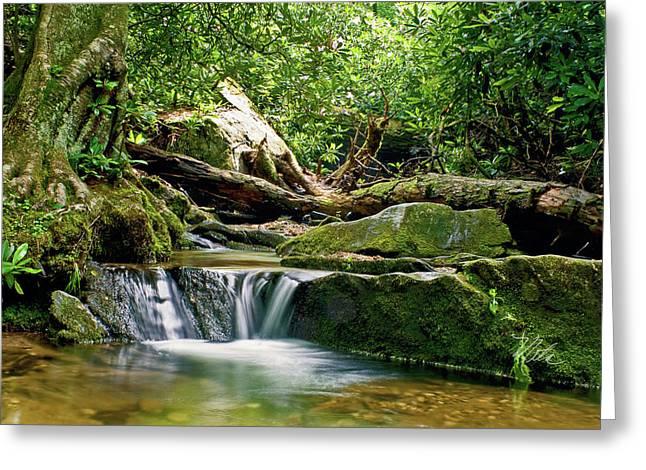 Sims Creek Waterfall Greeting Card by Meta Gatschenberger