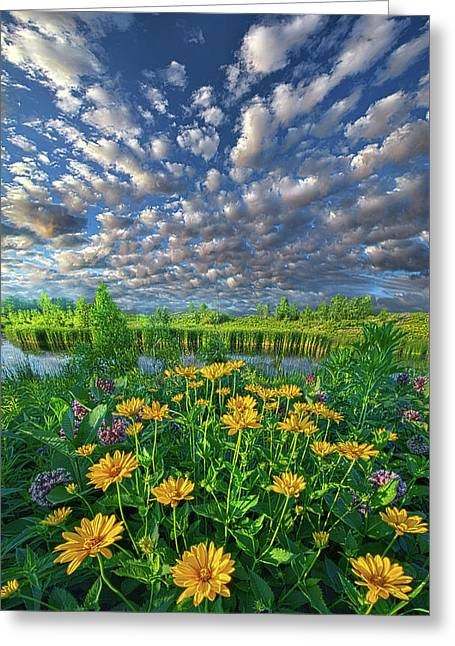 Sing For The Day Greeting Card by Phil Koch