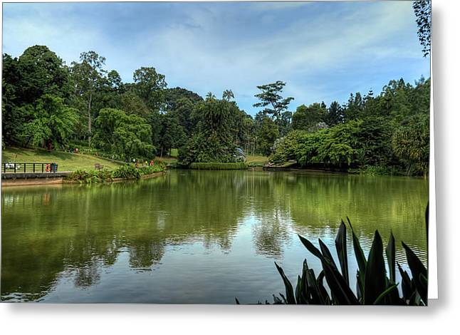 Singapore Botanical Gardens Greeting Card