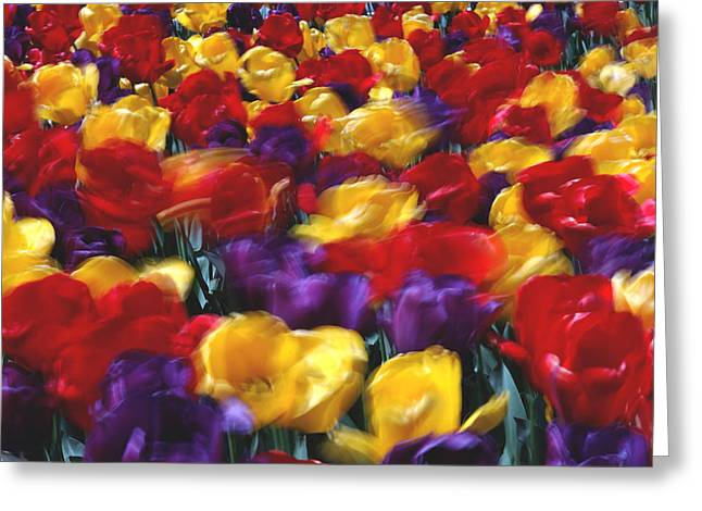Singing Tulips L062 Greeting Card by Yoshiki Nakamura