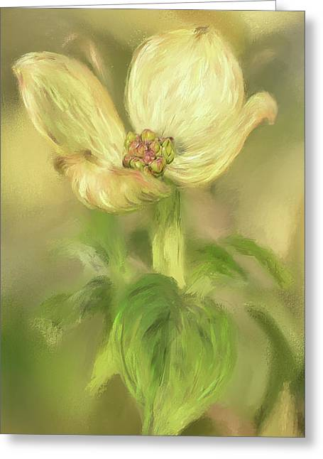 Greeting Card featuring the digital art Single Dogwood Blossom In Evening Light by Lois Bryan