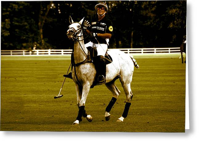 Single Polo Player Greeting Card