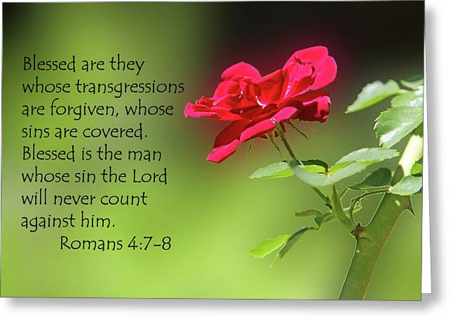 Single Red Rose Romans 4 V 7-8 Greeting Card by Linda Phelps