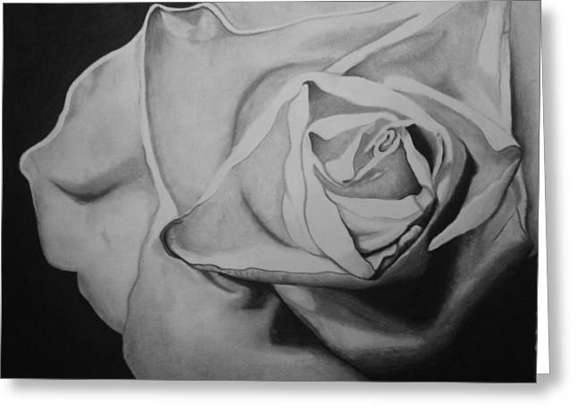 Single Rose Greeting Card by Jason Dunning