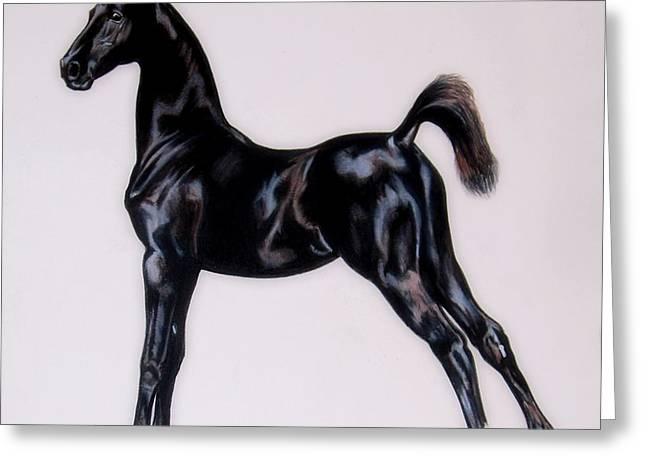 Sir Clarence Ronald - Saddlebred Colt Greeting Card by Cheryl Poland