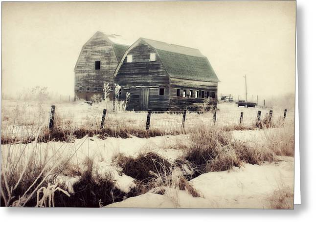 Sister Barns Greeting Card by Julie Hamilton