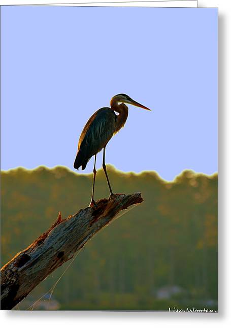 Greeting Card featuring the photograph Sitting High On The Log by Lisa Wooten