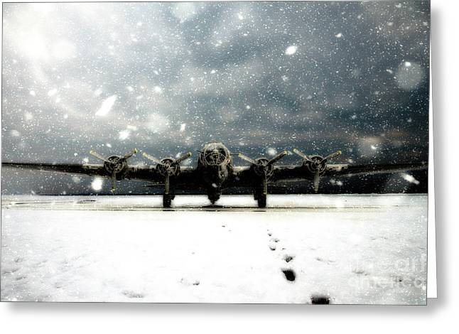 Sitting In The Snow Greeting Card by J Biggadike