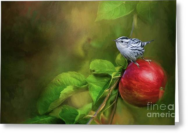 Sitting On An Apple Greeting Card by Eva Lechner