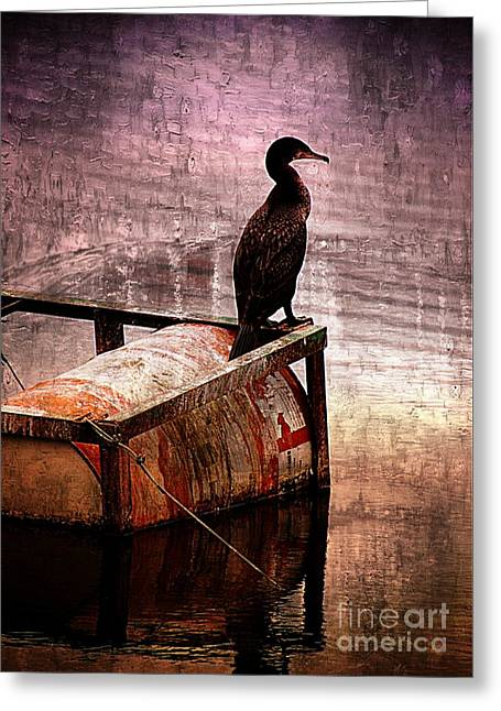 Sitting On The Dock Of The Bay Greeting Card by Clare Bevan