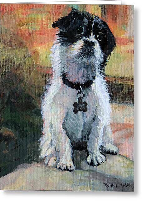 Sitting Pretty - Black And White Puppy Greeting Card by Bonnie Mason