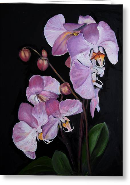 Six Orchids Greeting Card