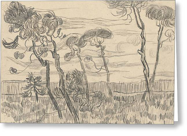 Six Pines Near The Enclosure Wall Greeting Card by Vincent Van Gogh