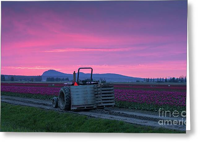 Greeting Card featuring the photograph Skagit Valley Dusk Calm by Mike Reid