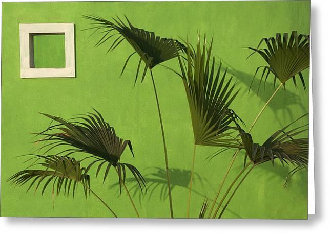 Skc 0683 The Nature Outside Greeting Card by Sunil Kapadia