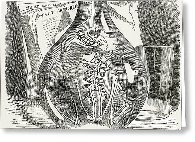 Skeleton In Bottle Of Water 19th Century Depiction Of Typhoid Greeting Card by English School