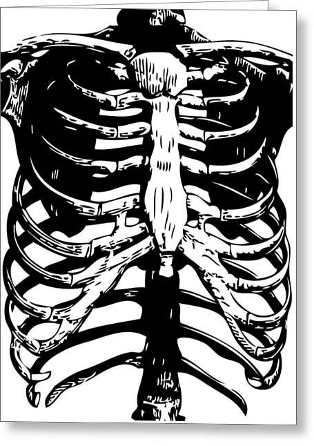 Skeleton Ribs Greeting Card by Eclectic at HeART