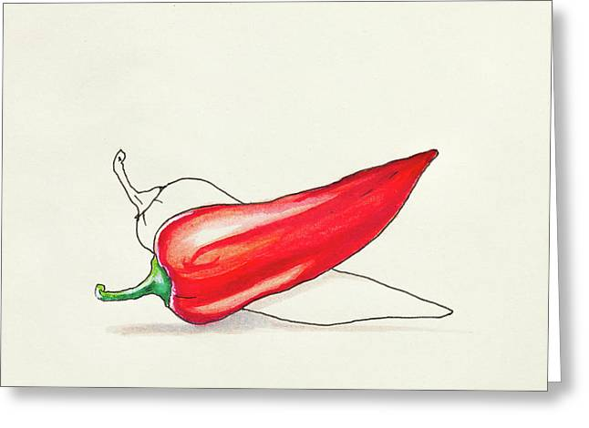 Sketch Drawing Of Red Hot Pepper Greeting Card
