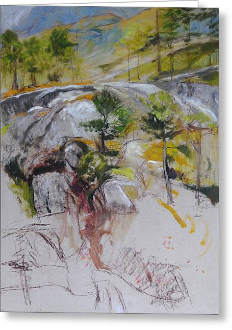 Naturalistic Drawings Greeting Cards - Sketch for Ogwen painting Greeting Card by Harry Robertson