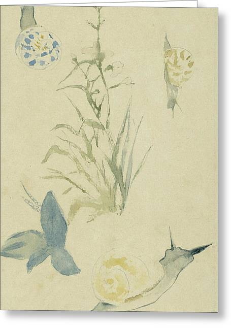 Sketches Of Snails, Flowering Plant Greeting Card by Edouard Manet