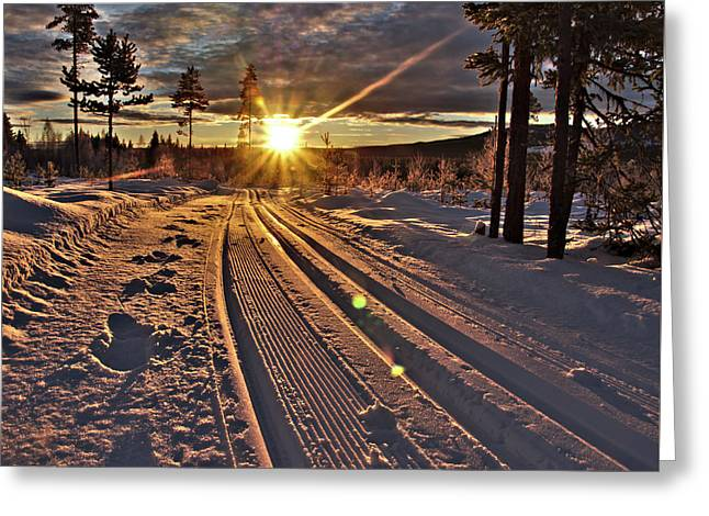 Ski Trails With Sun Beams Greeting Card