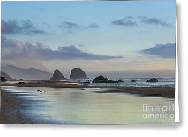 Skimming Along The Beach At Sunset Greeting Card