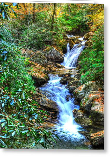 Skinny Dip Falls Greeting Card