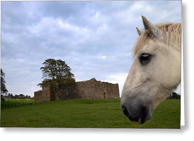 Skipness Castle Greeting Card
