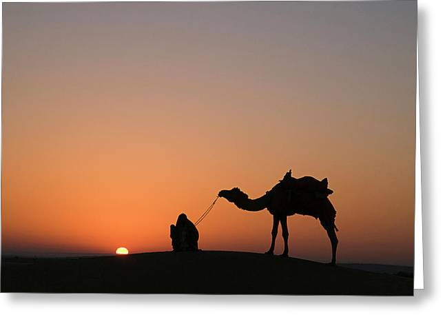 Skn 0870 Silhouette At Sunrise Greeting Card