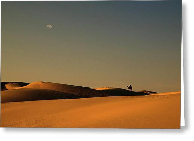 Skn 1117 Camel Ride At 6 Greeting Card