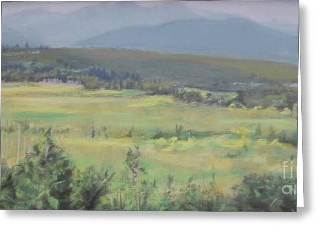 Skokomish Valley Greeting Card by Terri Thompson