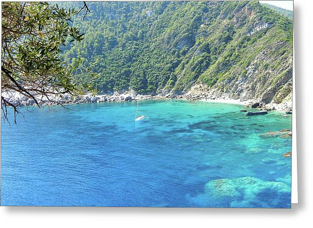 Skopelos Sea View. Greeting Card by Daniele Zambardi