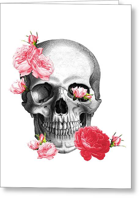 Skull With Pink Roses Framed Art Print Greeting Card by Madame Memento
