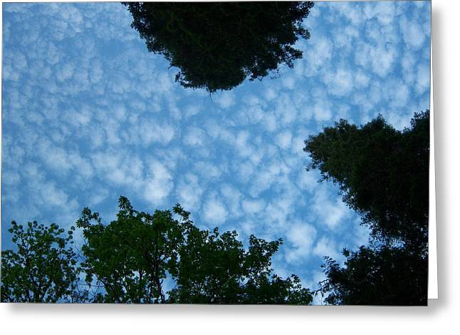 Sky Above Me Greeting Card by Ken Day