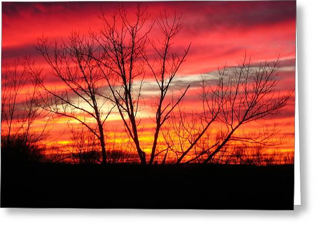 Sky Fire Greeting Card by Ron Moses