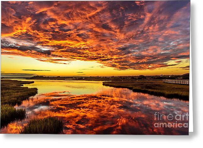Greeting Card featuring the photograph Sky On Fire by DJA Images