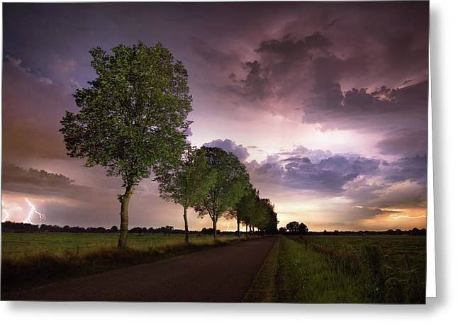 Trees And Lightning Greeting Card