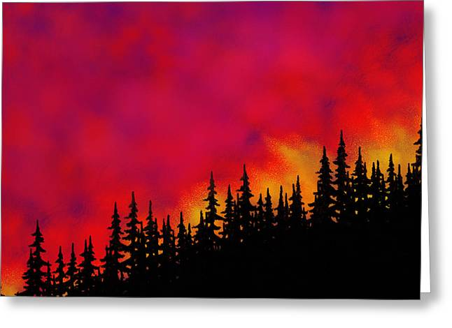 Sky On Fire Greeting Card by Tim Stringer