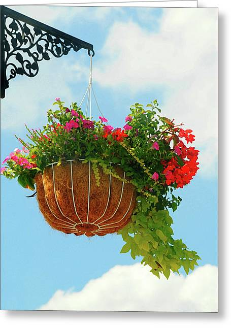 Sky Scape Basket Greeting Card by Diana Angstadt