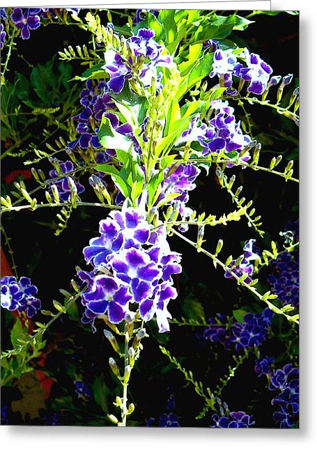 Elinor Mavor Greeting Cards - Sky Vine in Bloom Greeting Card by Elinor Mavor