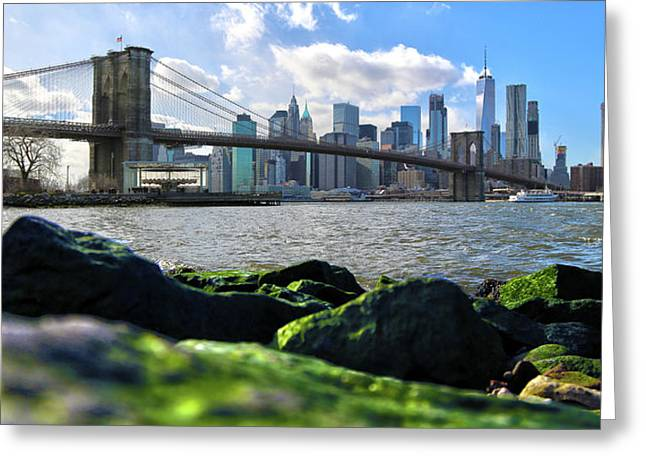 Greeting Card featuring the photograph Skyline by Mitch Cat