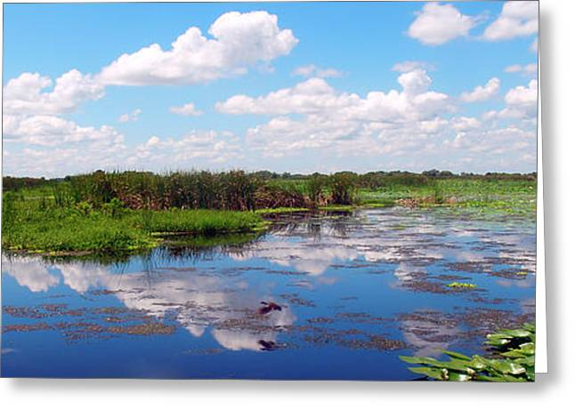 Skyscape Reflections Blue Cypress Marsh Near Vero Beach Florida C5 Greeting Card