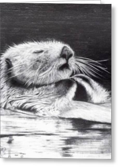Sleeping Beauty Sea Otter Greeting Card by Bob Patterson