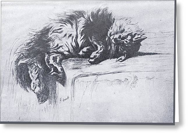 Sleeping Kitty Greeting Card by Henry Goode