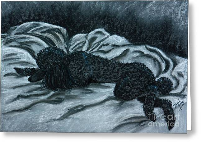 Sleeping Poodle Greeting Card