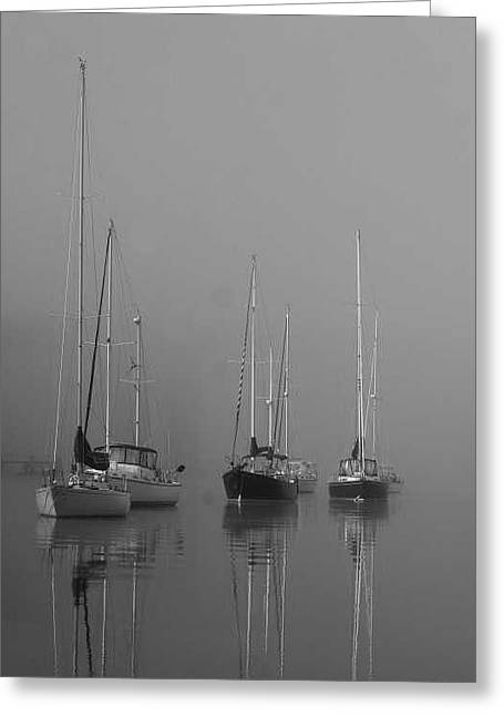 Sleeping Yachts  Greeting Card by Arthur Sa