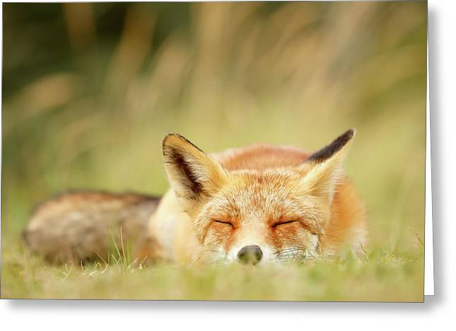 Sleepy Fox Is Sleepy IIi Greeting Card by Roeselien Raimond