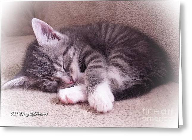 Sleepy Kitten Bymaryleeparker Greeting Card