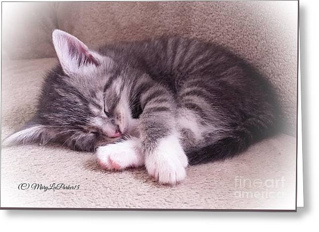 Sleepy Kitten Bymaryleeparker Greeting Card