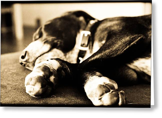Sleepy Puppy Greeting Card by Magdalena Green